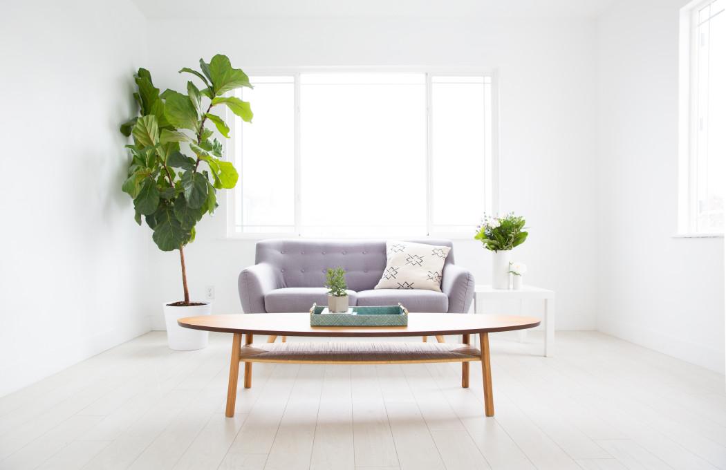Garder un logement salubre pour optimiser sa location et sa revente